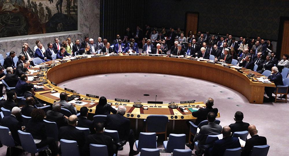 Élections en RDC: les 15 membres du Conseil de sécurité de l'ONUà Kinshasa