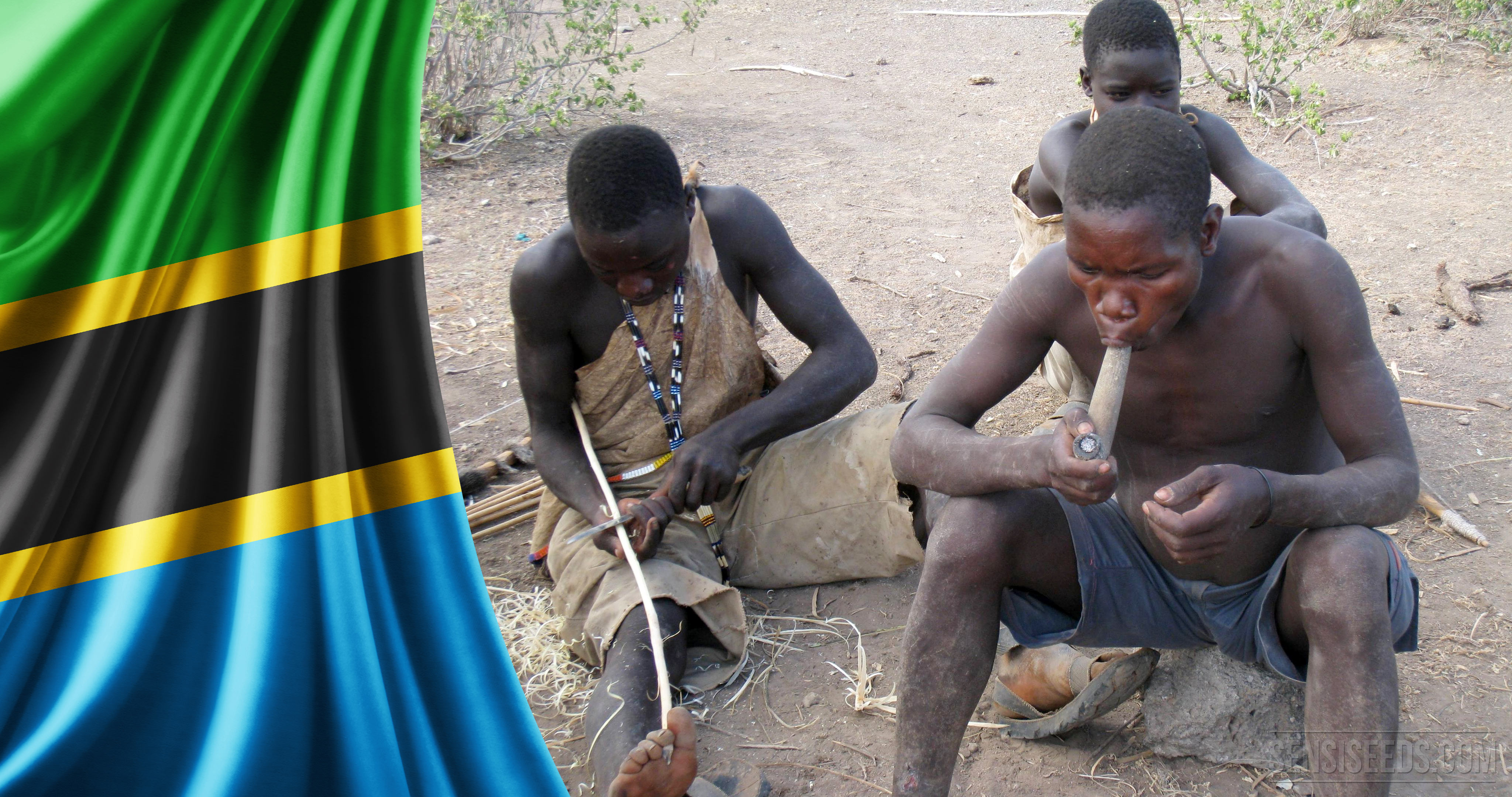 La lutte contre la drogue en Afrique, un défi colossal