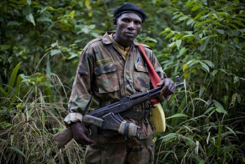 RDC-Rwanda: qu'est-ce qui bloque (encore) le désarmement des FDLR ?