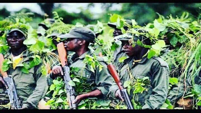 Sud-Kivu: les Maï Maï assiègent Minembwe, les raisons des violences sur les Hauts plateaux
