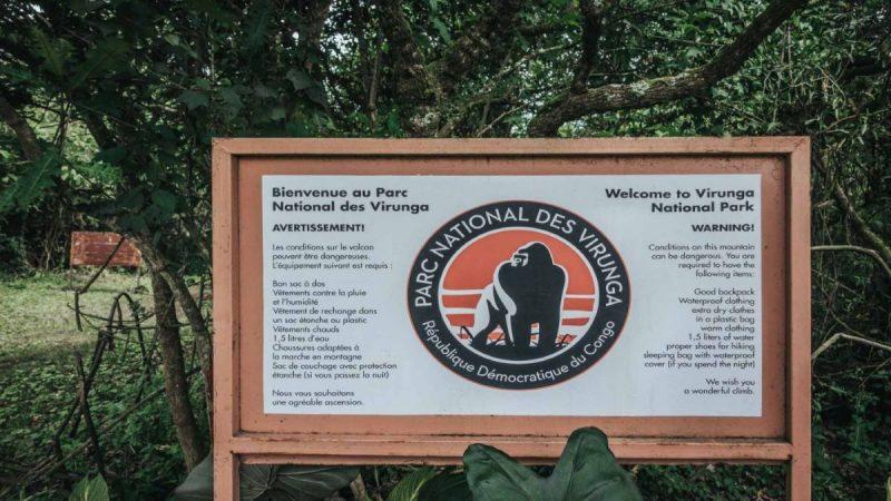 RDC: Au moins 18 morts dont 12 rangers dans une attaque à l'intérieur du parc des Virunga